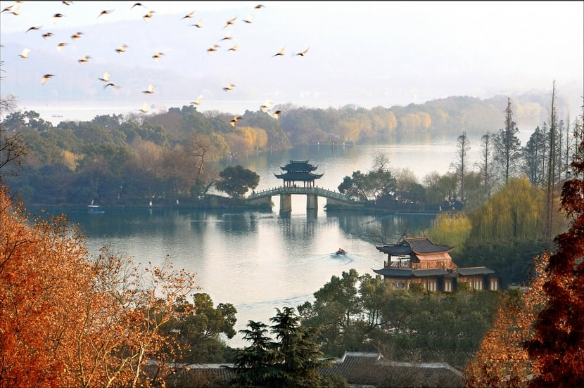 باغ چینی؛ منظر قدیم، شهر جدید
