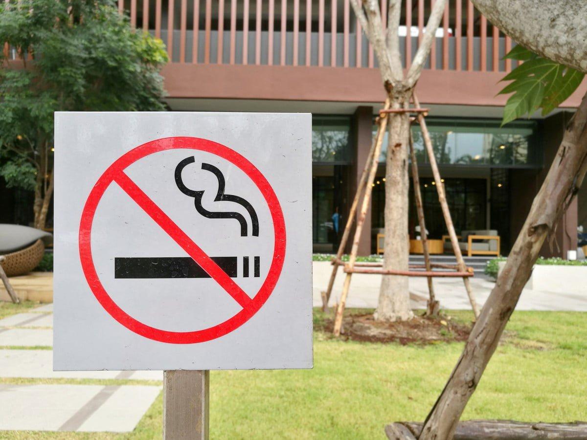 از هشتم ژوئن، پنجاه و دو باغ، میدان و پارک بدون دخانیات