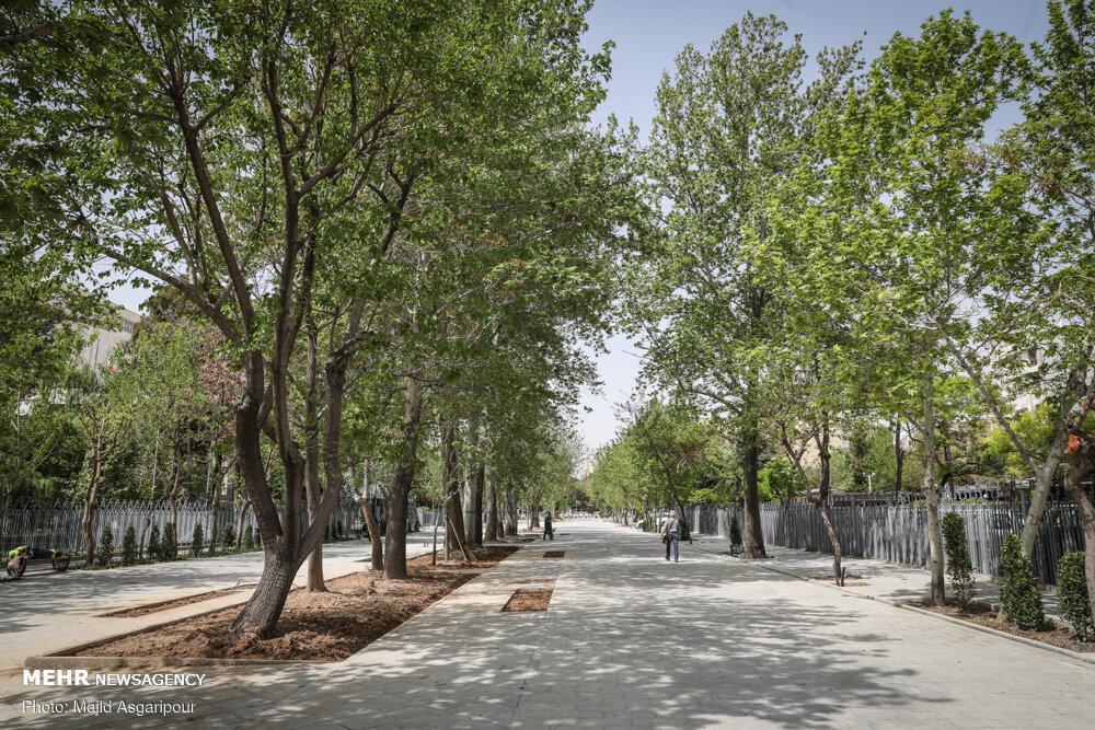 خیابان شهریار؛ قربانی تصمیم مدیریت شهری در تعریف پروژه