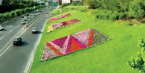نگاه کلیشه ای به طرح کاشت در فضاهای شهری