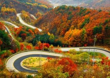 تصویر 1: جاده چالوس در پاییز، منبع: اقتصاد آنلاین