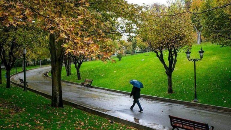 ممنوعیت کاشت چمن در تهران؛ حل یا پاک کردن صورت مساله؟